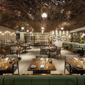 Thiết kế nhà hàng Roganic với phong cách gần với thiên nhiên